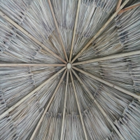 Inside of a palapa (watertight)