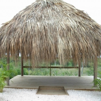 Palapa with wooden floor at Jan Thiel